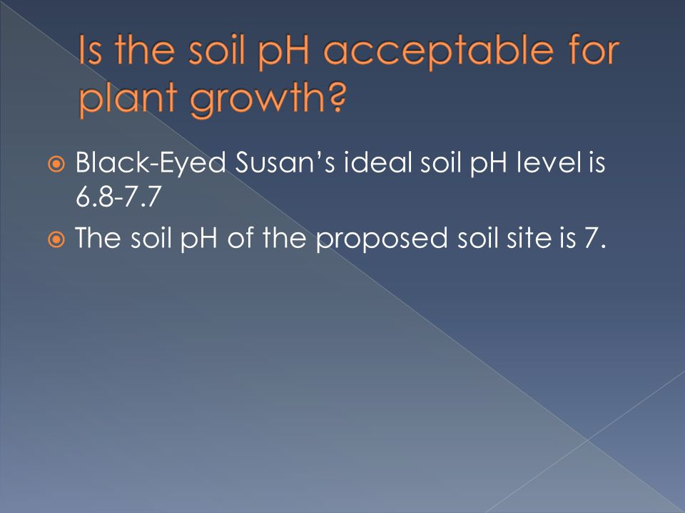  Black-Eyed Susan's ideal soil pH level is 6.8-7.7  The soil pH of the proposed soil site is 7.