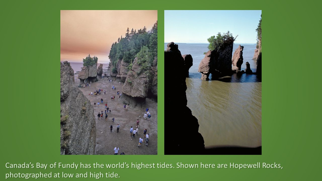 Canada's Bay of Fundy has the world's highest tides.