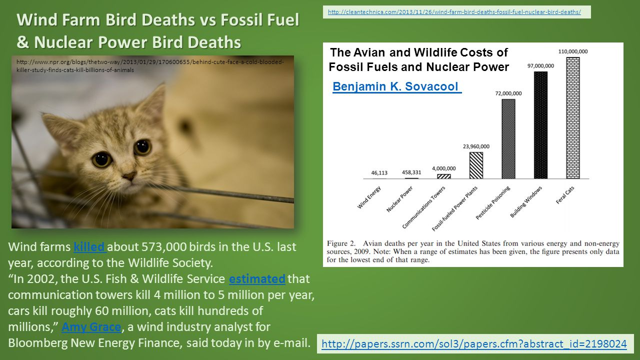 http://cleantechnica.com/2013/11/26/wind-farm-bird-deaths-fossil-fuel-nuclear-bird-deaths/ Wind Farm Bird Deaths vs Fossil Fuel & Nuclear Power Bird Deaths http://papers.ssrn.com/sol3/papers.cfm abstract_id=2198024 http://www.npr.org/blogs/thetwo-way/2013/01/29/170600655/behind-cute-face-a-cold-blooded- killer-study-finds-cats-kill-billions-of-animals Wind farms killed about 573,000 birds in the U.S.