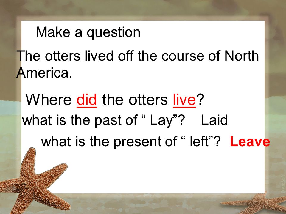 """Make a question The otters lived off the course of North America. Where did the otters live? what is the past of """" Lay""""?Laid what is the present of """""""
