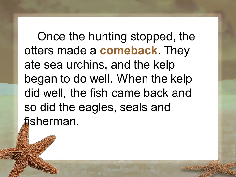 Once the hunting stopped, the otters made a comeback. They ate sea urchins, and the kelp began to do well. When the kelp did well, the fish came back