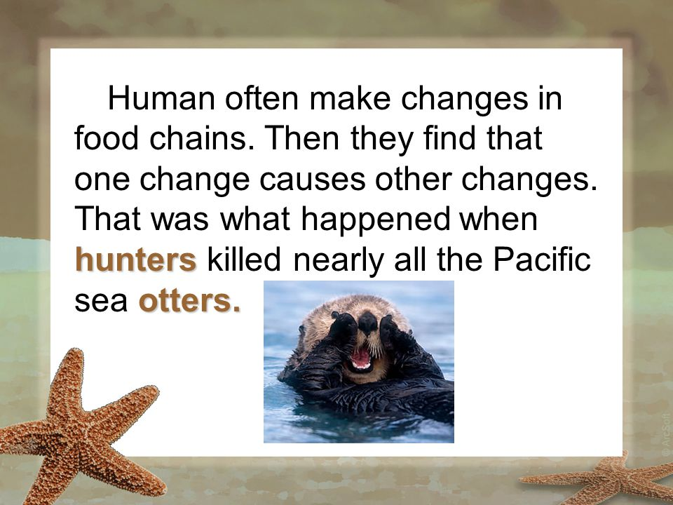 hunters otters. Human often make changes in food chains. Then they find that one change causes other changes. That was what happened when hunters kill