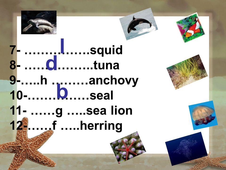 7- …………….squid 8- ……………..tuna 9-…..h ………anchovy 10-……………seal 11- ……g …..sea lion 12-……f …..herring l d b