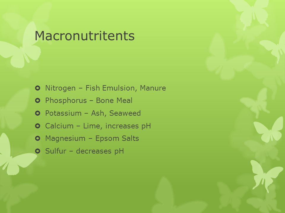 Macronutritents  Nitrogen – Fish Emulsion, Manure  Phosphorus – Bone Meal  Potassium – Ash, Seaweed  Calcium – Lime, increases pH  Magnesium – Epsom Salts  Sulfur – decreases pH