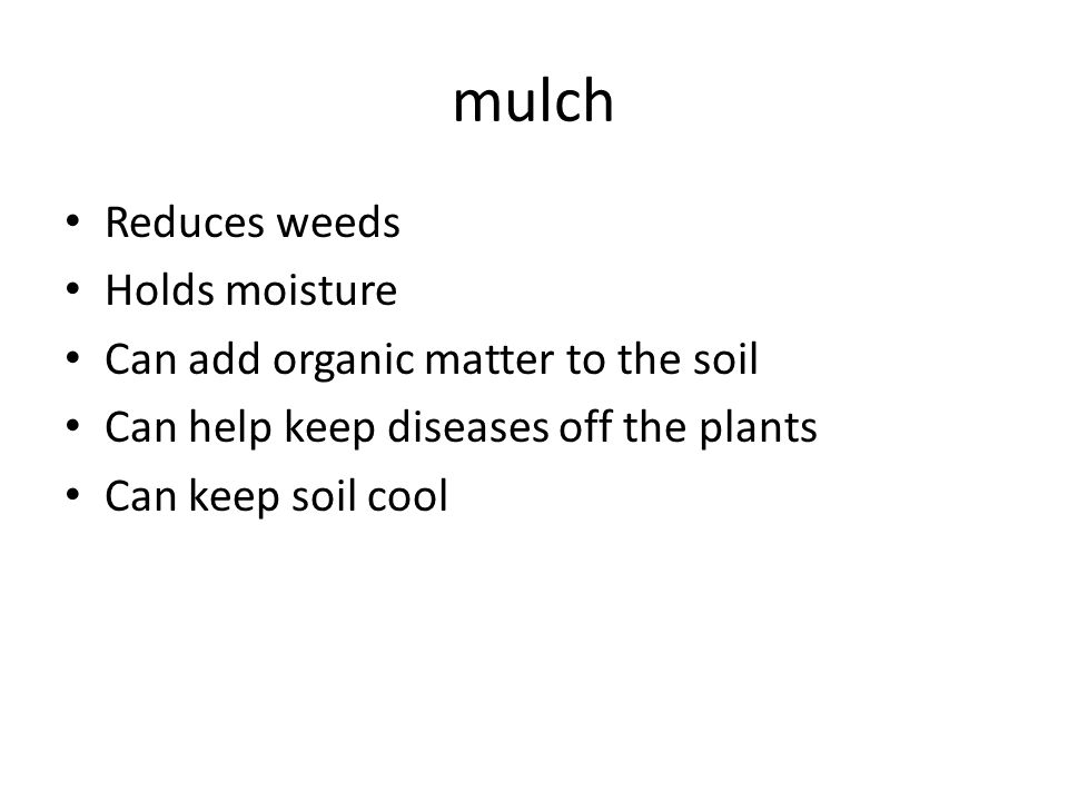 mulch Reduces weeds Holds moisture Can add organic matter to the soil Can help keep diseases off the plants Can keep soil cool