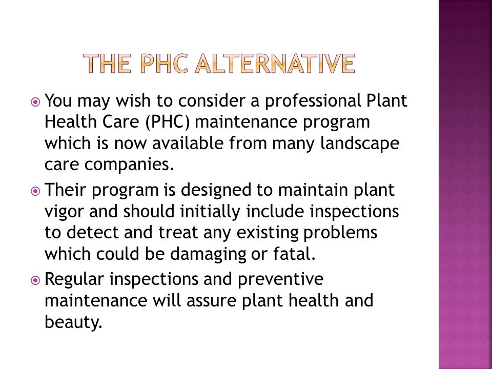  You may wish to consider a professional Plant Health Care (PHC) maintenance program which is now available from many landscape care companies.