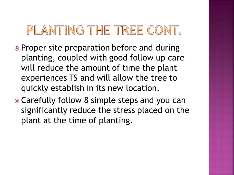 Proper site preparation before and during planting, coupled with good follow up care will reduce the amount of time the plant experiences TS and will allow the tree to quickly establish in its new location.