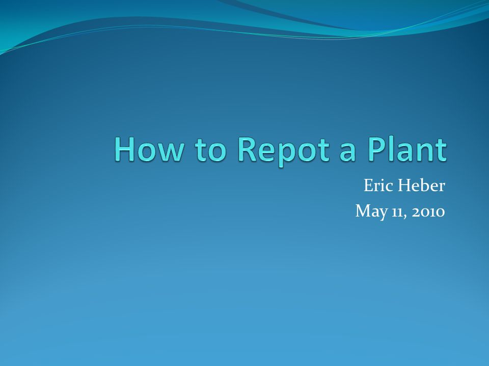 Eric Heber May 11, 2010