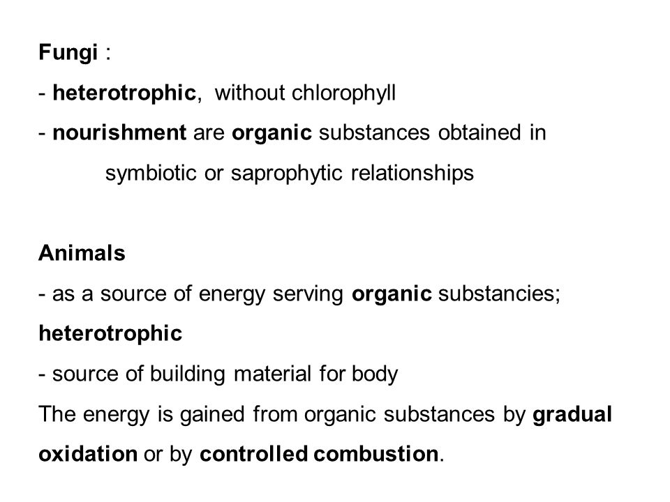 Fungi : - heterotrophic, without chlorophyll - nourishment are organic substances obtained in symbiotic or saprophytic relationships Animals - as a source of energy serving organic substancies; heterotrophic - source of building material for body The energy is gained from organic substances by gradual oxidation or by controlled combustion.