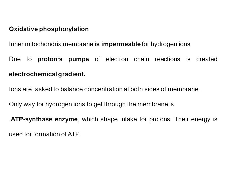 Oxidative phosphorylation Inner mitochondria membrane is impermeable for hydrogen ions.