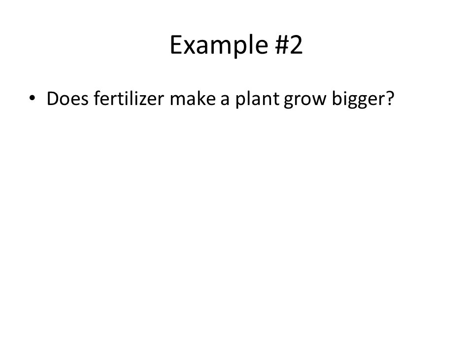 Example #2 Does fertilizer make a plant grow bigger?