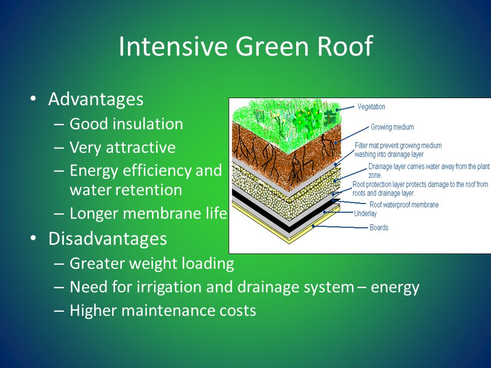 Intensive Green Roof Advantages – Good insulation – Very attractive – Energy efficiency and storm water retention – Longer membrane life Disadvantages – Greater weight loading – Need for irrigation and drainage system – energy – Higher maintenance costs