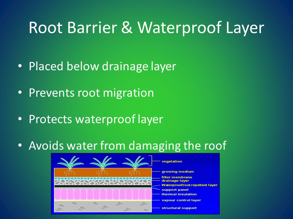 Placed below drainage layer Prevents root migration Protects waterproof layer Avoids water from damaging the roof Root Barrier & Waterproof Layer