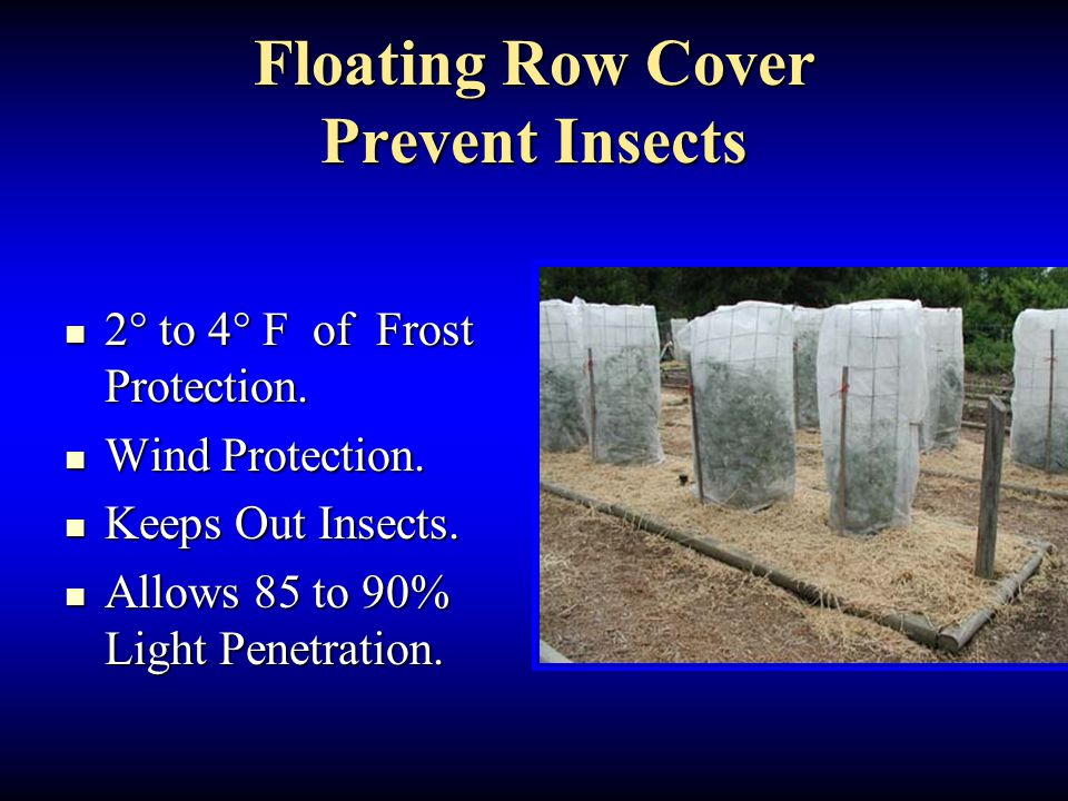 Floating Row Cover Prevent Insects 2° to 4° F of Frost Protection. 2° to 4° F of Frost Protection. Wind Protection. Wind Protection. Keeps Out Insects