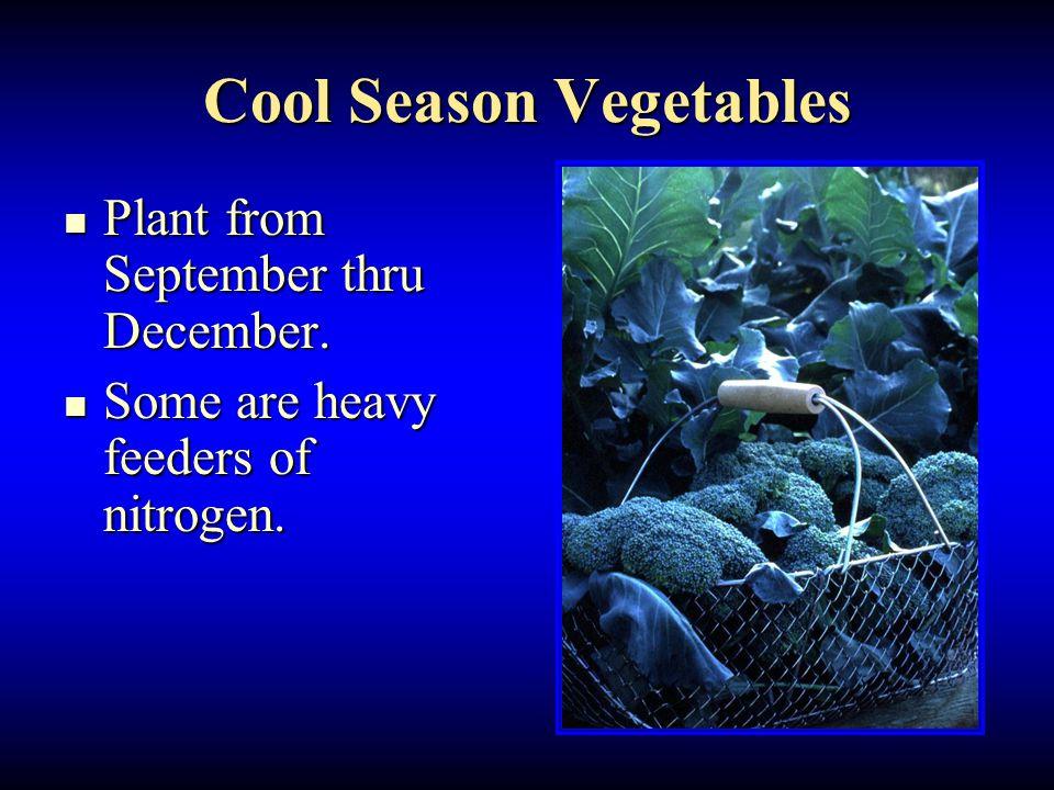 Cool Season Vegetables Plant from September thru December.