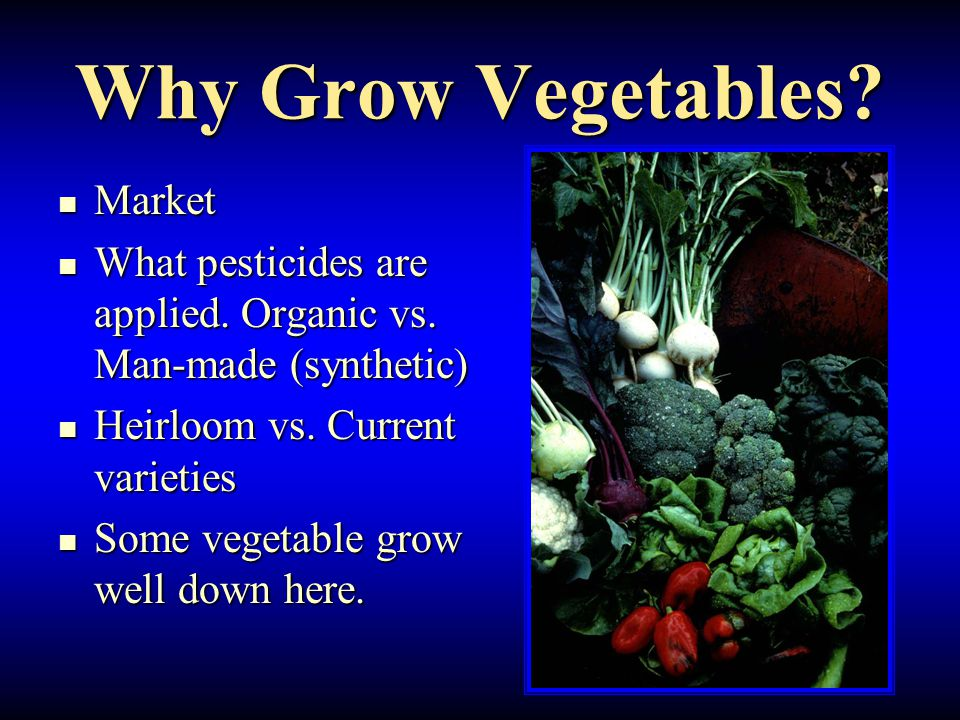 Why Grow Vegetables.Market Market What pesticides are applied.