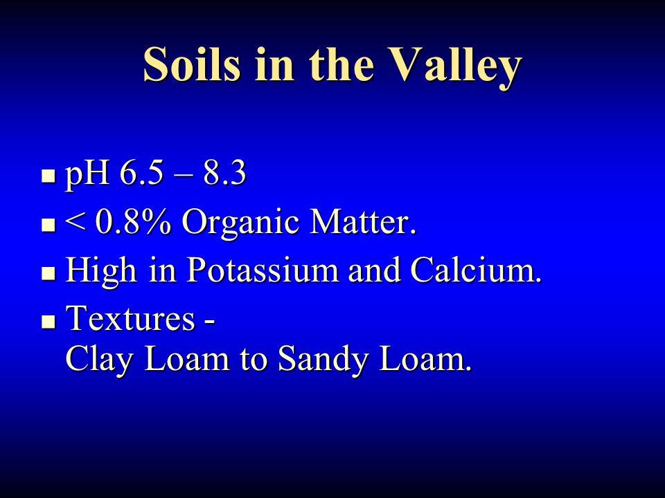 Soils in the Valley pH 6.5 – 8.3 pH 6.5 – 8.3 < 0.8% Organic Matter.