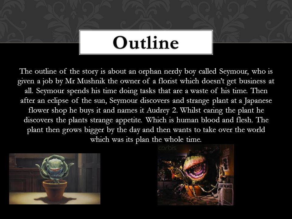 The outline of the story is about an orphan nerdy boy called Seymour, who is given a job by Mr Mushnik the owner of a florist which doesn't get business at all.