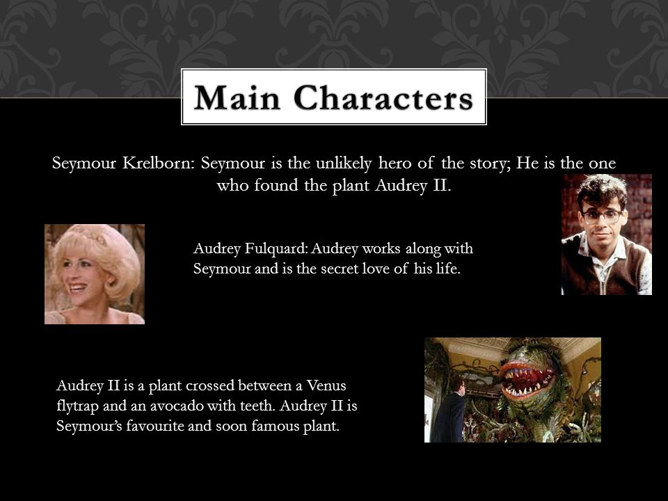 Seymour Krelborn: Seymour is the unlikely hero of the story; He is the one who found the plant Audrey II.