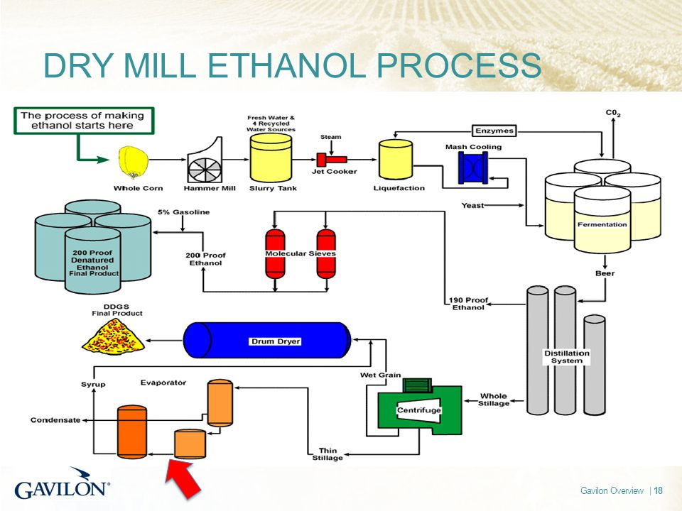 Gavilon Overview | 18 DRY MILL ETHANOL PROCESS