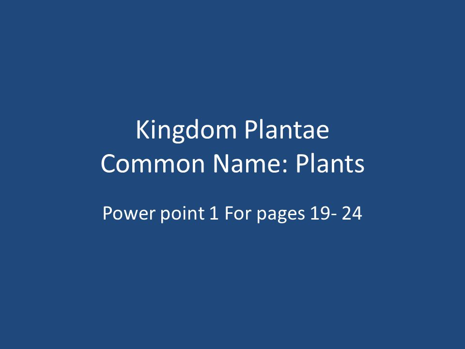 Kingdom Plantae Common Name: Plants Power point 1 For pages 19- 24