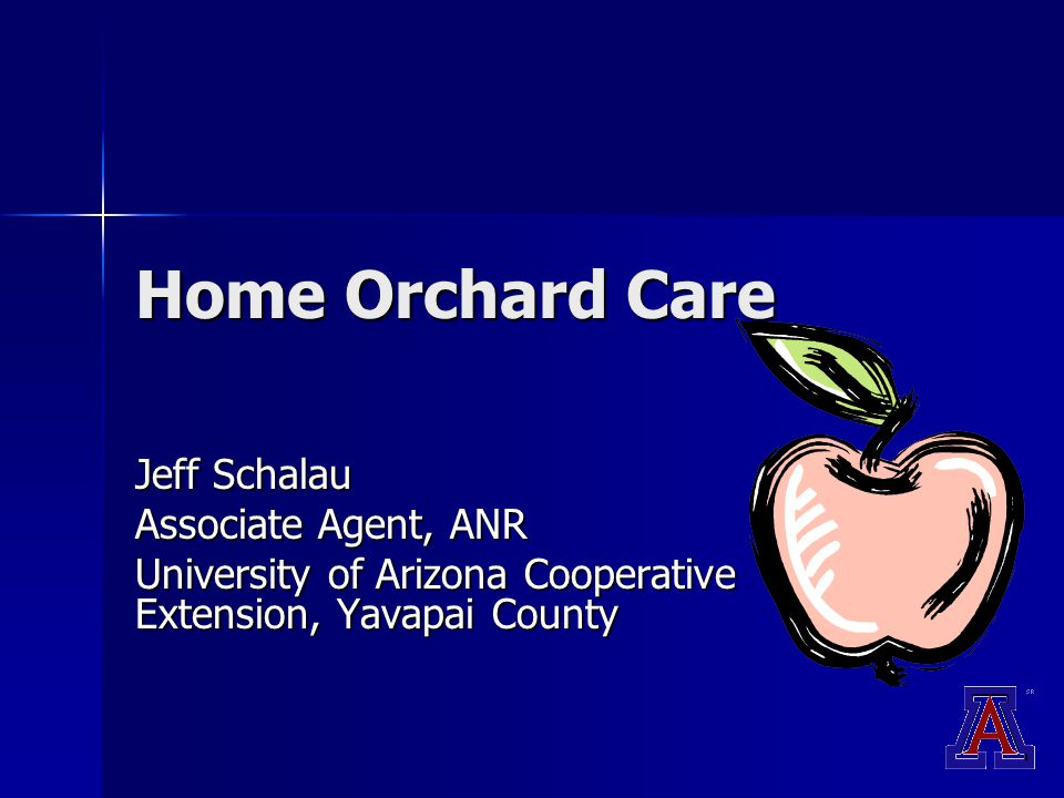 Home Orchard Care Jeff Schalau Associate Agent, ANR University of Arizona Cooperative Extension, Yavapai County