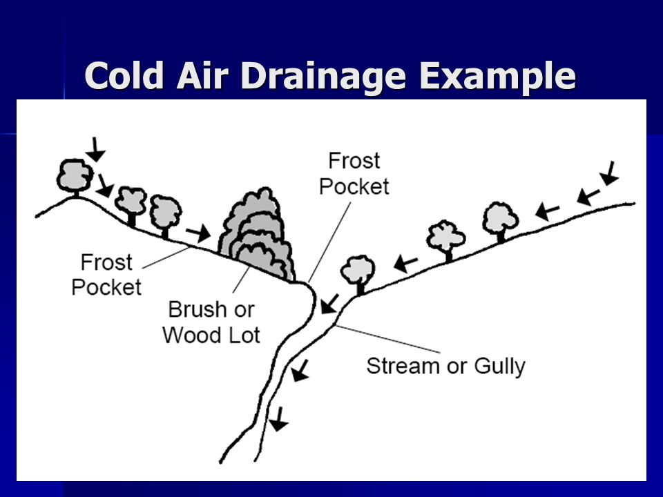 Cold Air Drainage Example