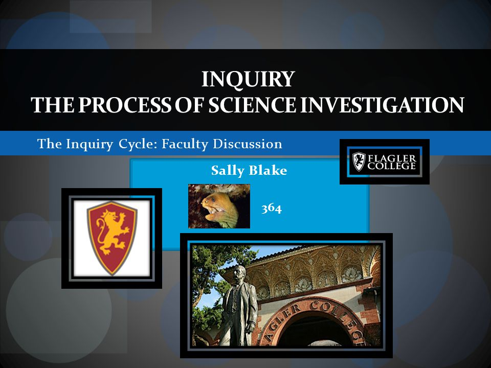 The Inquiry Cycle: Faculty Discussion INQUIRY THE PROCESS OF SCIENCE INVESTIGATION Sally Blake 364