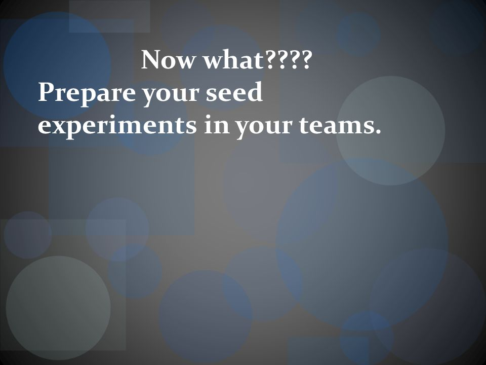 Now what Prepare your seed experiments in your teams.