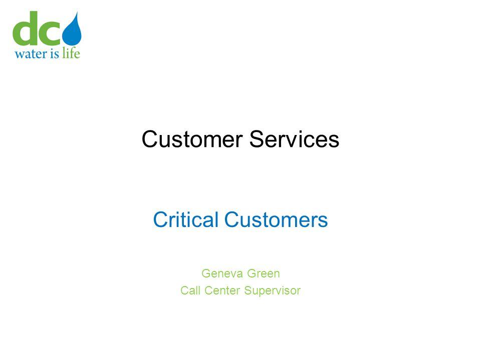 Customer Services Critical Customers Geneva Green Call Center Supervisor