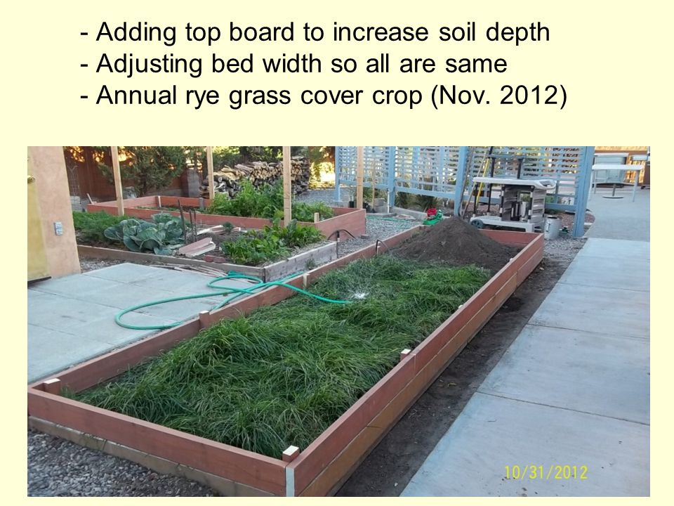 - Adding top board to increase soil depth - Adjusting bed width so all are same - Annual rye grass cover crop (Nov.