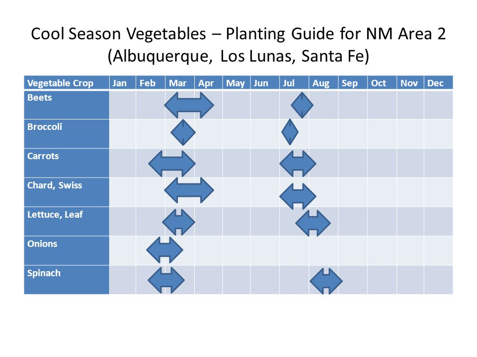 Cool Season Vegetables – Planting Guide for NM Area 2 (Albuquerque, Los Lunas, Santa Fe) Vegetable CropJanFebMarAprMayJunJulAugSepOctNovDec Beets Broccoli Carrots Chard, Swiss Lettuce, Leaf Onions Spinach