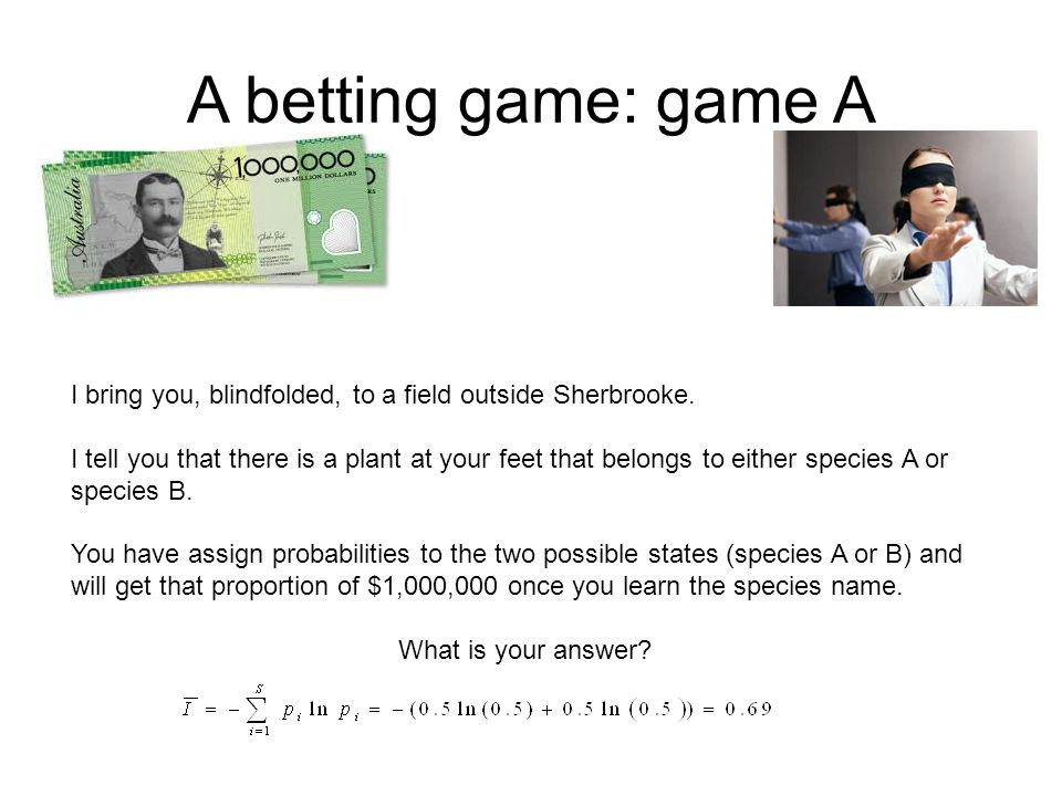 A betting game: game A I bring you, blindfolded, to a field outside Sherbrooke.