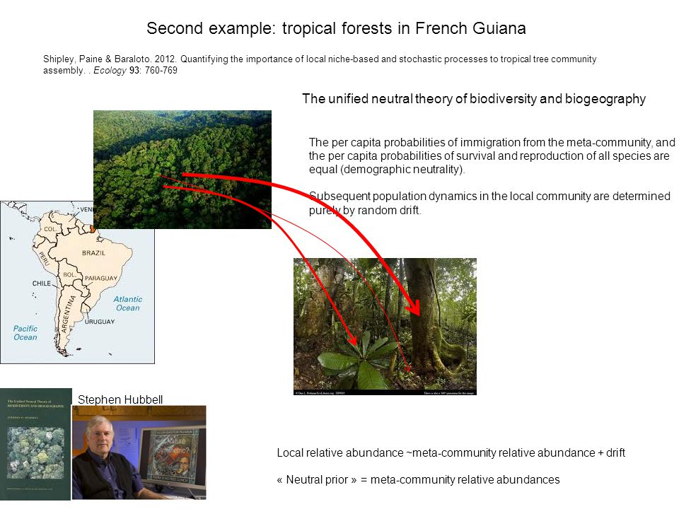 Shipley, Paine & Baraloto. 2012. Quantifying the importance of local niche-based and stochastic processes to tropical tree community assembly.. Ecolog