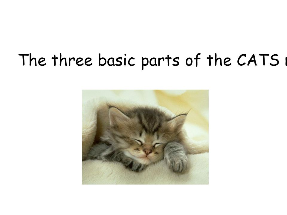 The three basic parts of the CATS model