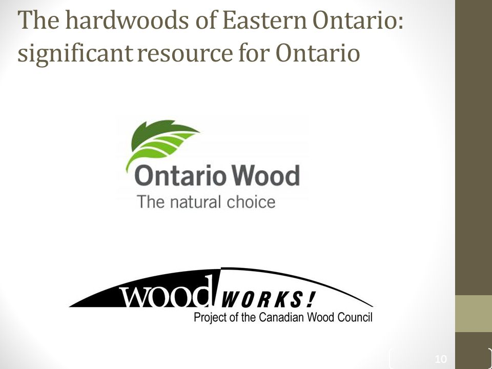 The hardwoods of Eastern Ontario: significant resource for Ontario 10