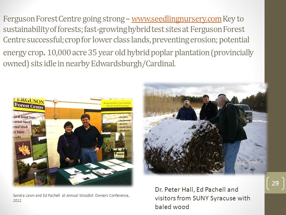 29 Ferguson Forest Centre going strong – www.seedlingnursery.com Key to sustainability of forests; fast-growing hybrid test sites at Ferguson Forest Centre successful; crop for lower class lands, preventing erosion; potential energy crop.