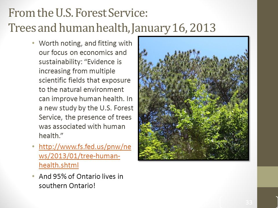 """From the U.S. Forest Service: Trees and human health, January 16, 2013 Worth noting, and fitting with our focus on economics and sustainability: """"Evid"""