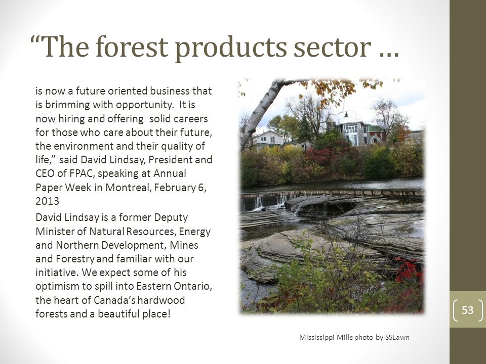 """""""The forest products sector … is now a future oriented business that is brimming with opportunity. It is now hiring and offering solid careers for tho"""