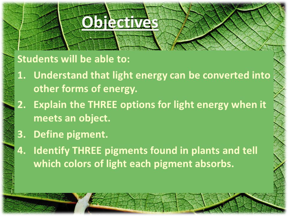 Objectives Students will be able to: 1.Understand that light energy can be converted into other forms of energy.