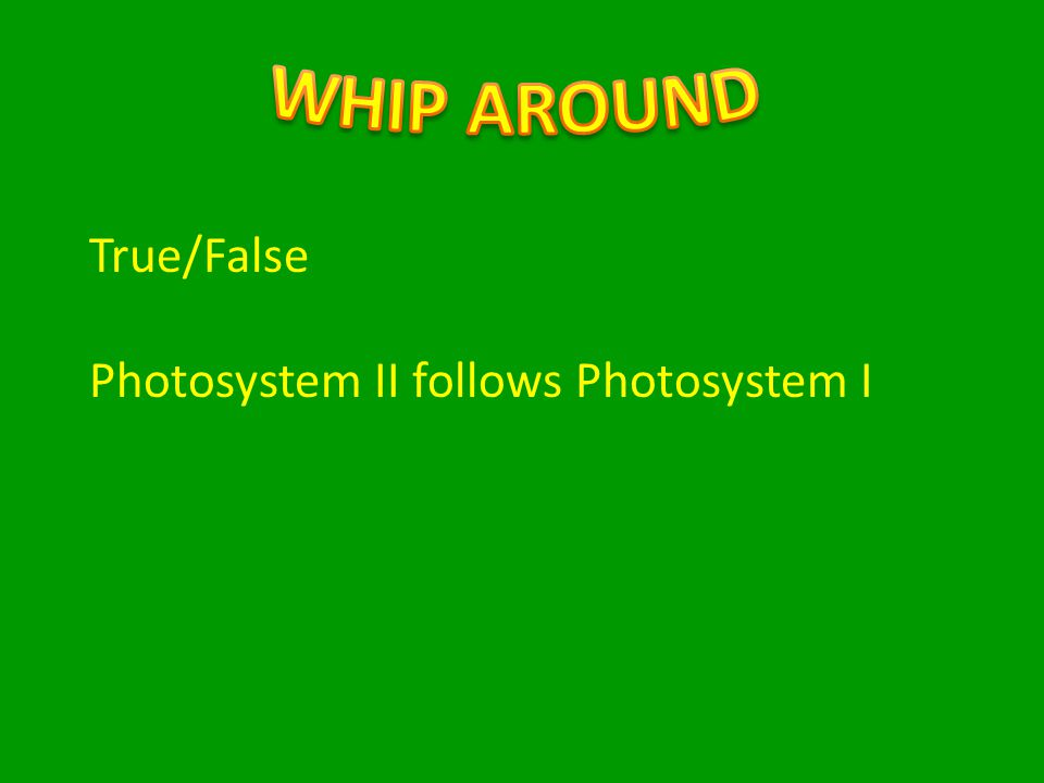 True/False Photosystem II follows Photosystem I