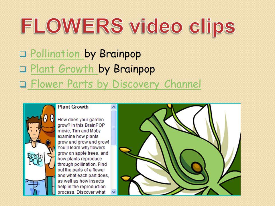  Pollination by BrainpopPollination  Plant Growth by BrainpopPlant Growth  Flower Parts by Discovery Channel Flower Parts by Discovery Channel