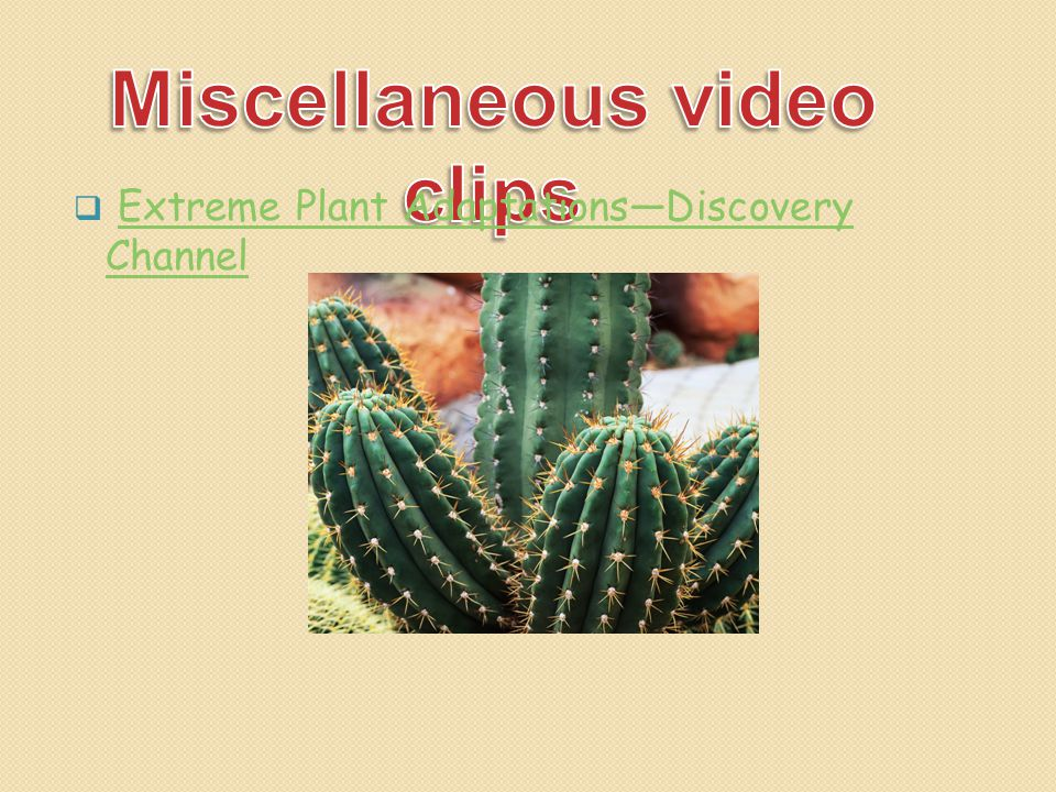  Extreme Plant Adaptations—Discovery ChannelExtreme Plant Adaptations—Discovery Channel