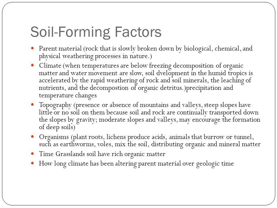 Soil Salinization The gradual accumulation of salt in a soil, often as a result of improper irrigation methods.