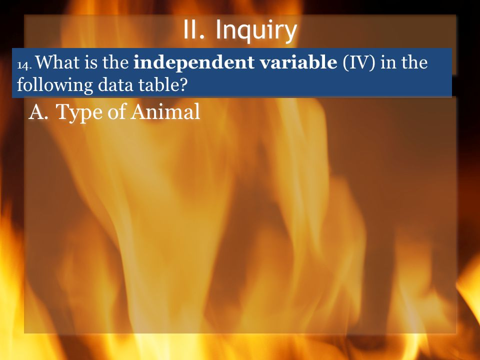 II. Inquiry 14. What is the independent variable (IV) in the following data table? A.Type of Animal