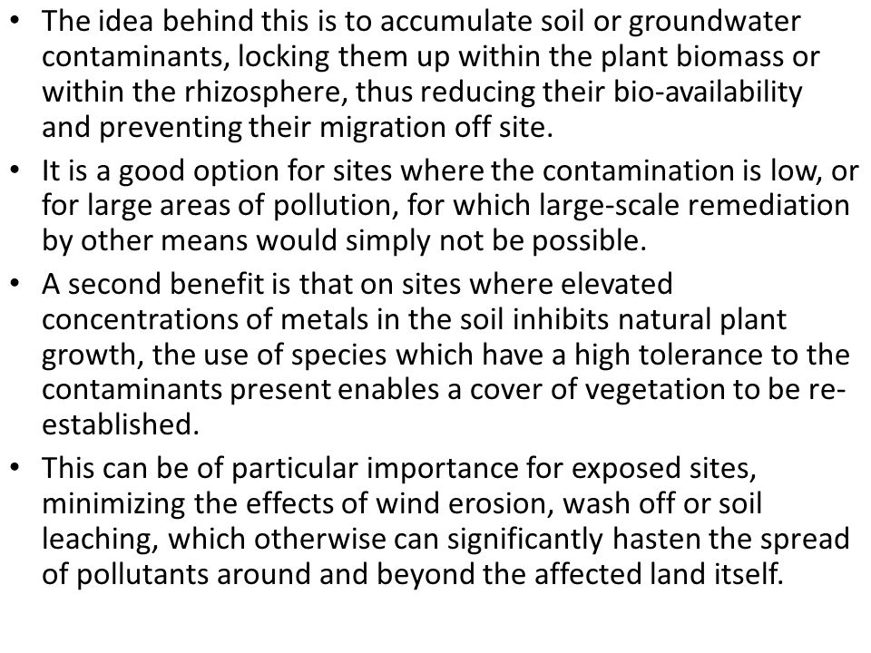 The idea behind this is to accumulate soil or groundwater contaminants, locking them up within the plant biomass or within the rhizosphere, thus reduc