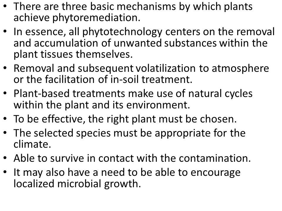 There are three basic mechanisms by which plants achieve phytoremediation.