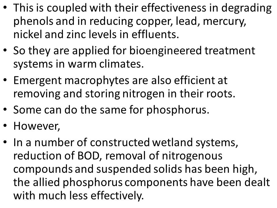 This is coupled with their effectiveness in degrading phenols and in reducing copper, lead, mercury, nickel and zinc levels in effluents.