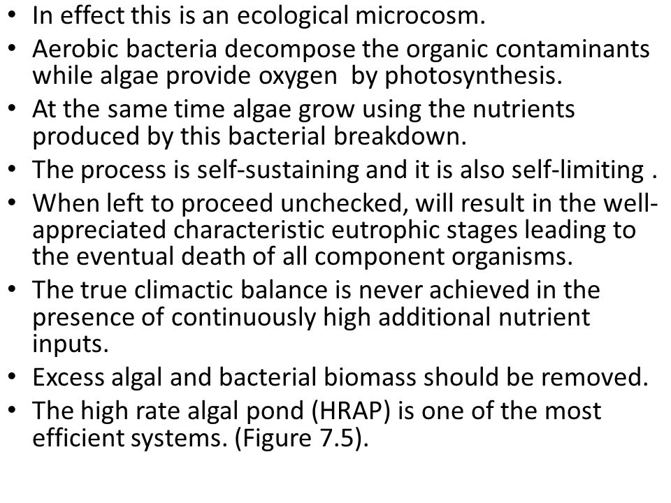 In effect this is an ecological microcosm. Aerobic bacteria decompose the organic contaminants while algae provide oxygen by photosynthesis. At the sa