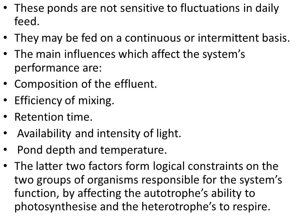 These ponds are not sensitive to fluctuations in daily feed. They may be fed on a continuous or intermittent basis. The main influences which affect t